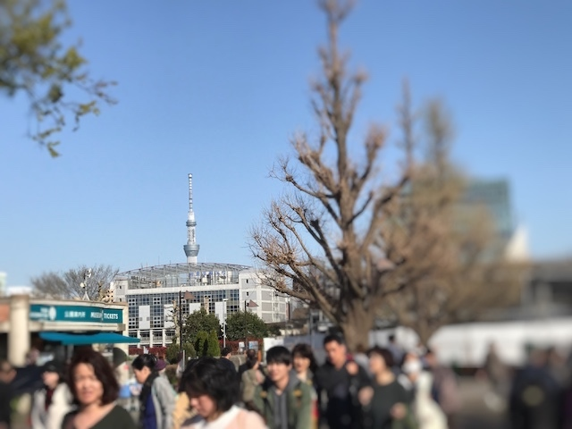 IMG_0969_Fotor.jpg